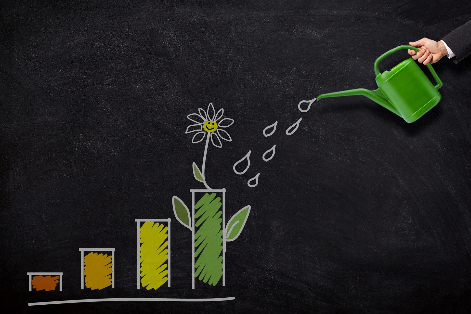 Contribution sociétale et profitabilité : le 'en même temps' des entreprises à mission